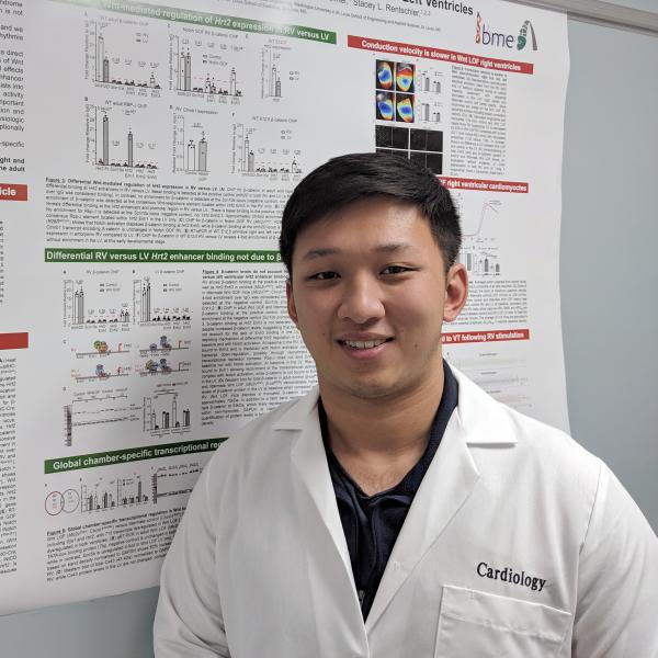 Bio 500 Research Spotlight: Kevin Yin on the Rentschler Lab