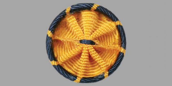 Newly elected AAAS Fellows will receive rosette pins in gold and blue, colors symbolizing science and engineering.